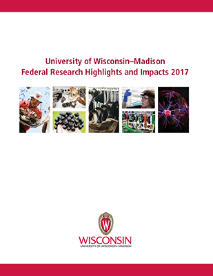 Cover page of the UW–Madison Federal Research Highlights and Impacts 2017.